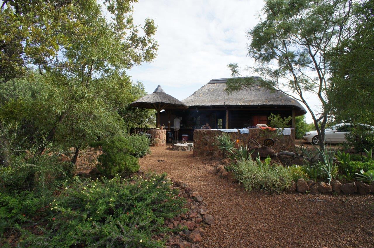 Ystervark - MooiPlasie Bushcamp/Lodge